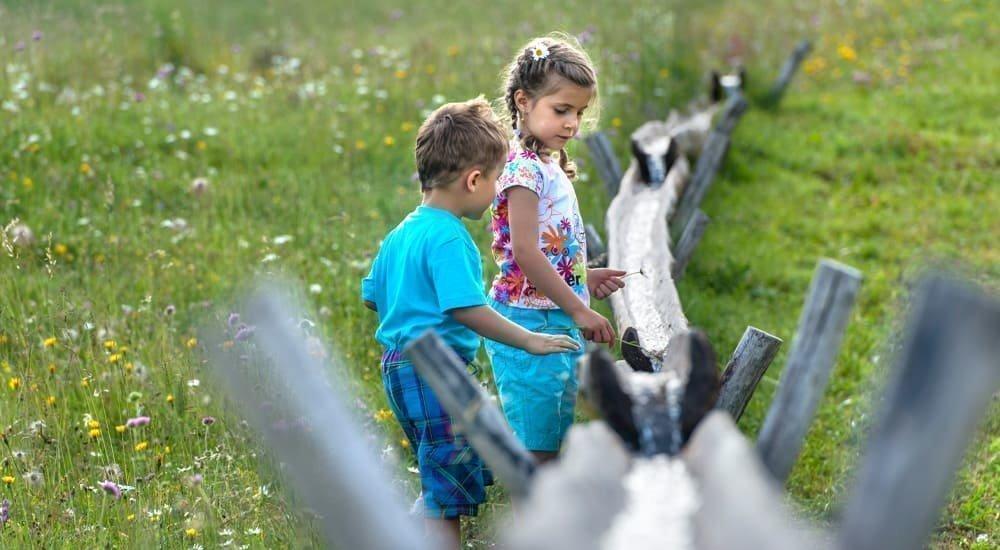 2019 Sommer Kinder Helmuth Rier