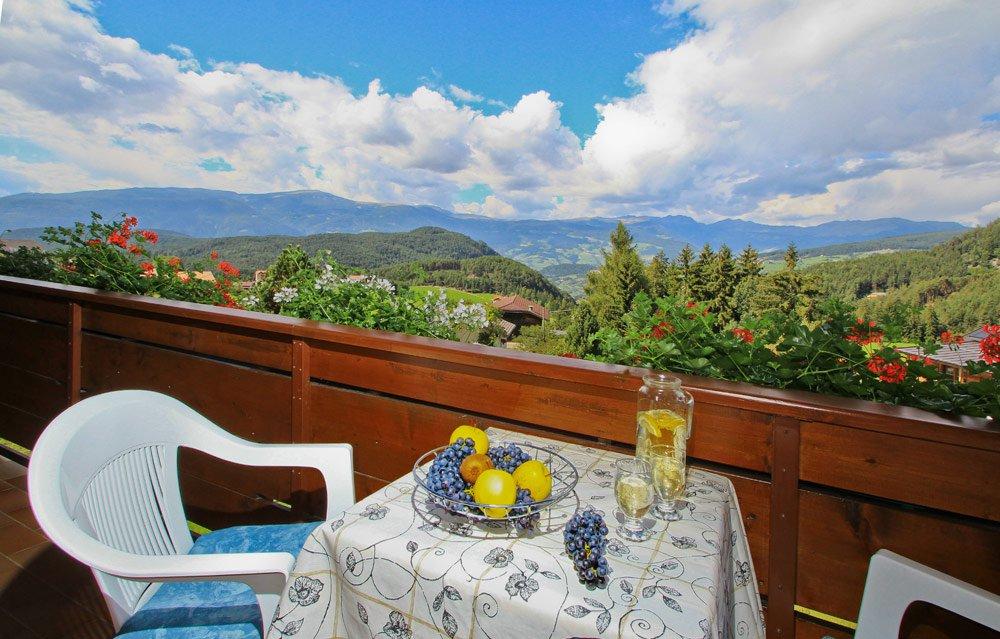 Ferienwohnung Arnika - Ausblick