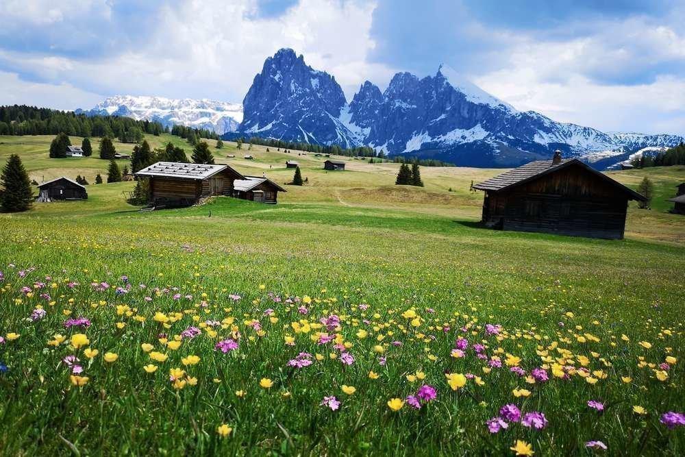 La primavera sull'Alpe di Siusi